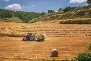 Massey Ferguson tractor pulls Krone baler in field